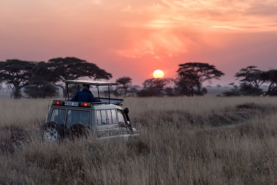 Viajes de novios, safari en Kenia